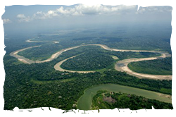 Rio Jurua